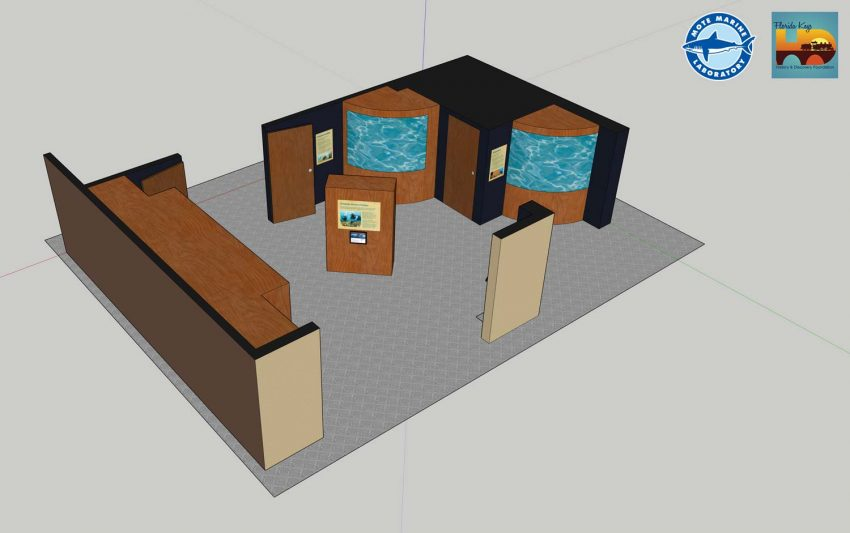 provided by Mote Marine Laboratory): Conceptual design of Coral Reef Exploration exhibit.