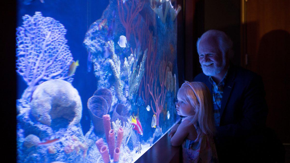 Coral Reef Exploration Exhibit